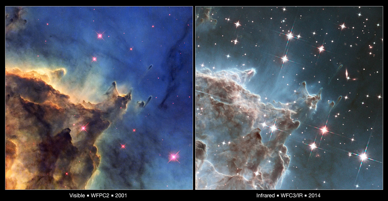 Hubble's visible and infrared views of the Monkey Head Nebula
